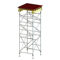 Load-bearing scaffolding <br/>Top Tower 40